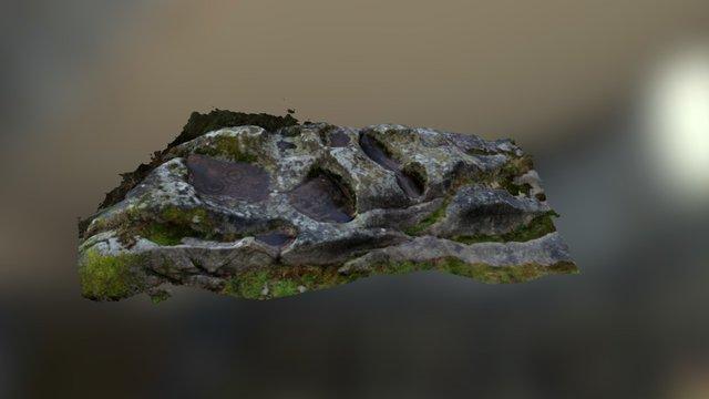 Petróglifo mergullado de Pena Longa 3D Model