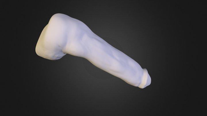 PM3D_ZSphere_2 3D Model