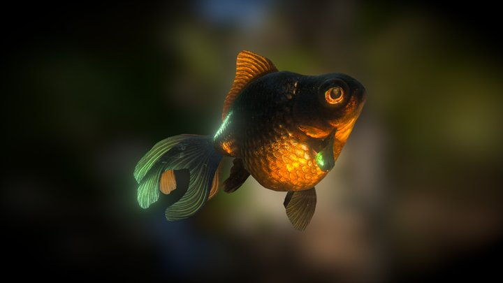 Black Moor Goldfish (Smoothie-3D upload) 3D Model