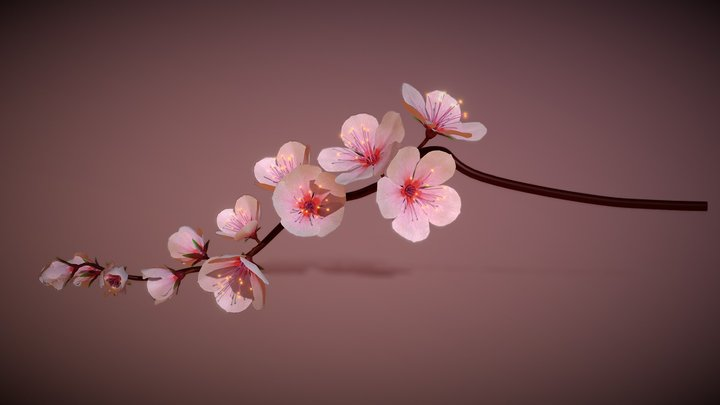 Cherry Blossoms Branch Rigged Animated 3D Model