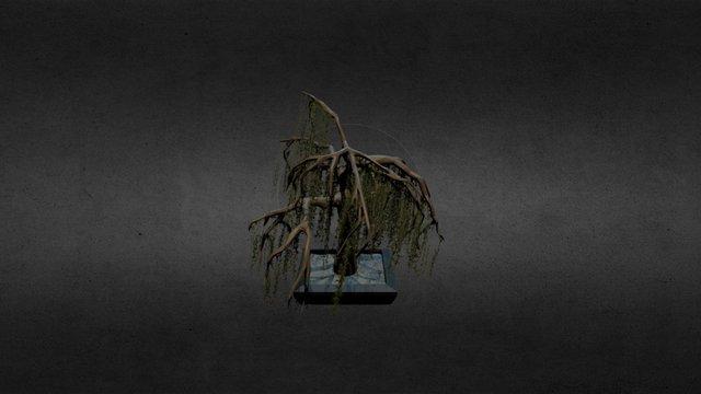 Willow Bonsai Tree 3D Model