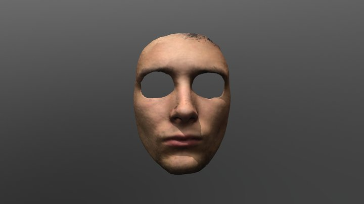 Face Mask 3D Model