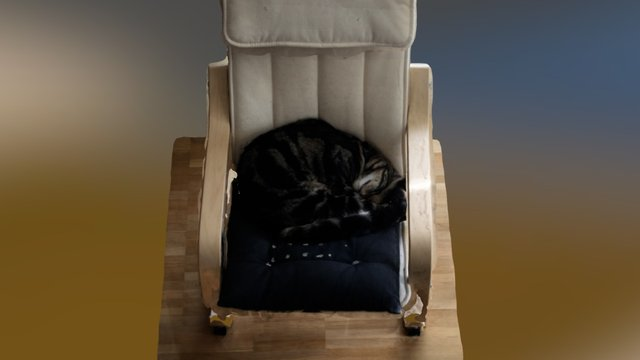 Tora sleeping 3D Model
