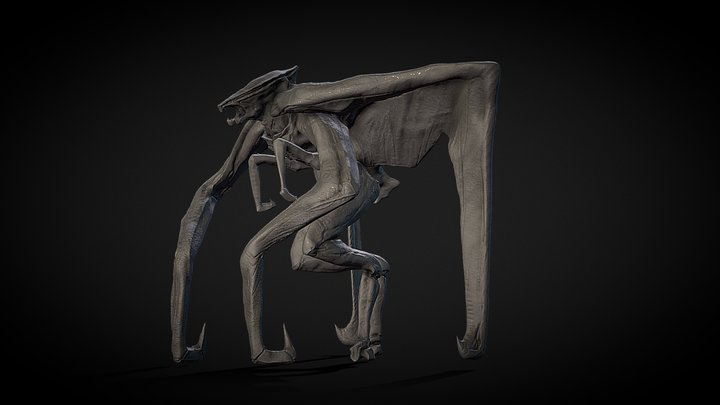 zMUTO 3D Model