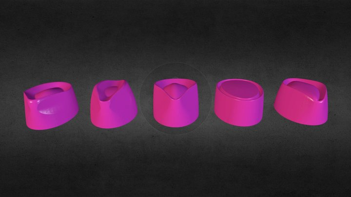 Phrenology Group 3D Model