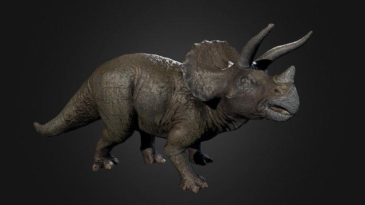 Triceratops Photogrammetry test 3D Model