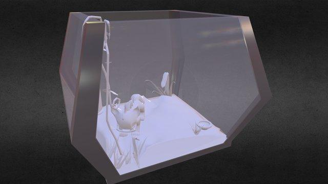 Greybox 3D Model