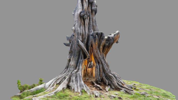 Carved tree stump 3D Model