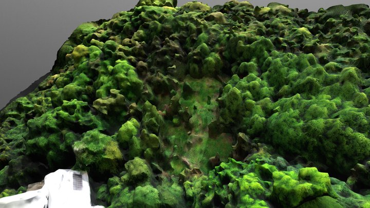 Beishan E 3D Model