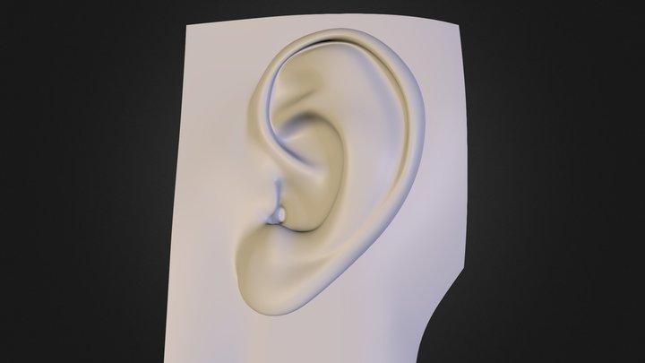 ear-ind1 3D Model