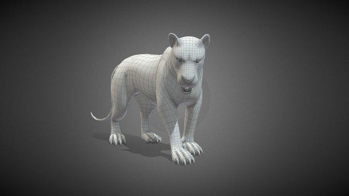 Lion (Big Cat) Base Mesh 3D Model