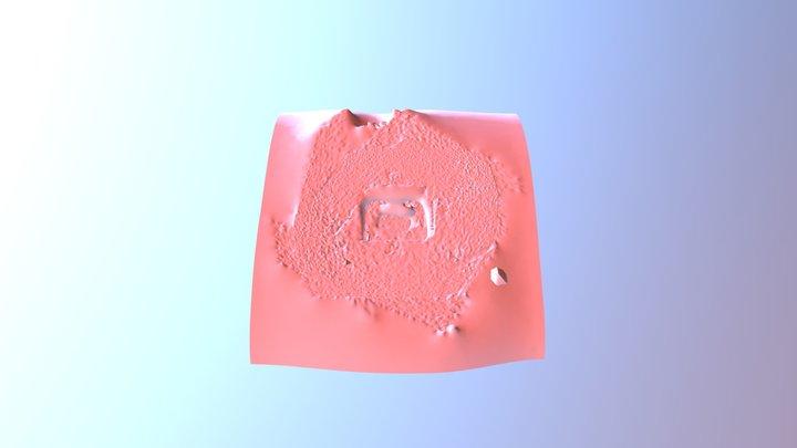 Result Self Meshing 3D Model
