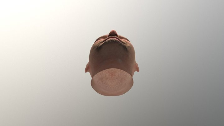 tanguy head from itSeez3D scan 3D Model