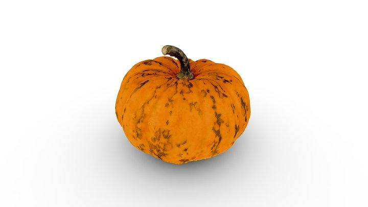 Small pumpkin 3D Model