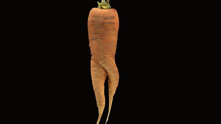 Mandrake Carrot 3 3D Model