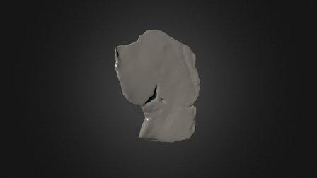 Parietal Fragment 2 of CPC 274 3D Model