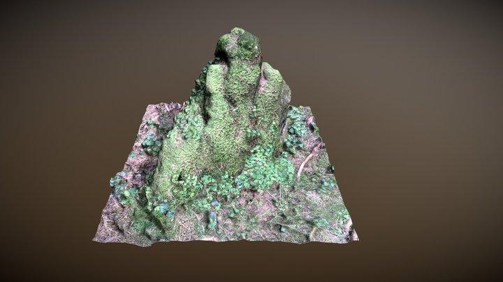 Mossy Rock 3D Model