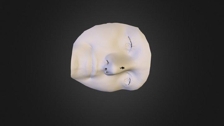 100218 3D Model