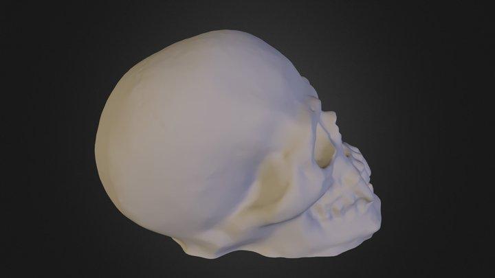 vampireSkull 3D Model