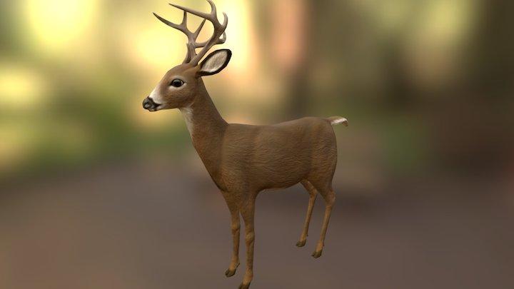 Little Buck 2.0 3D Model