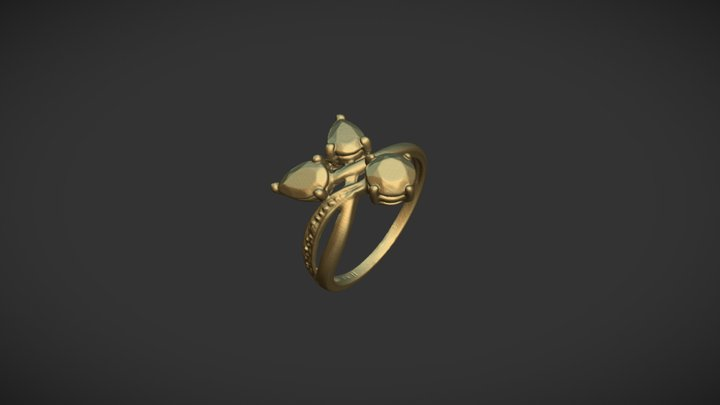 Women's ring scanned with D3D-s scanner 3D Model