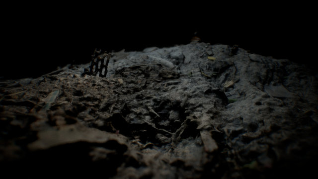 Scorched Earth 3D Model