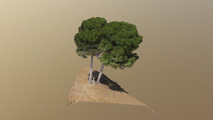 Arbol3 3D Model