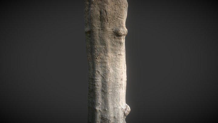 Scanned tree 3D Model