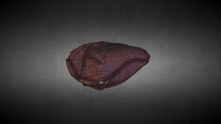 SICK HEART + Textures 3D Model