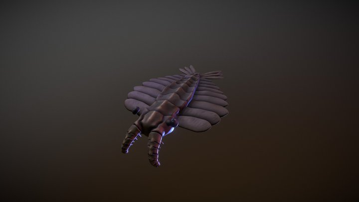 Anomalocaris3 3D Model