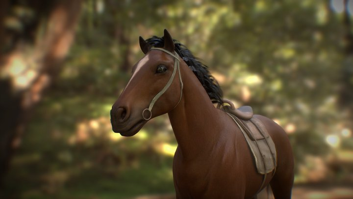 horse_test 3D Model