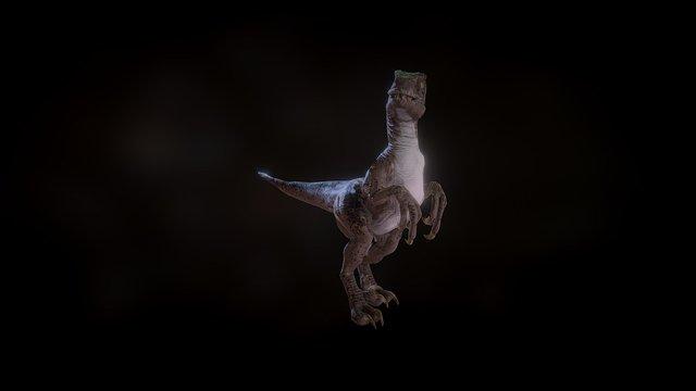 Raptor 3D Model