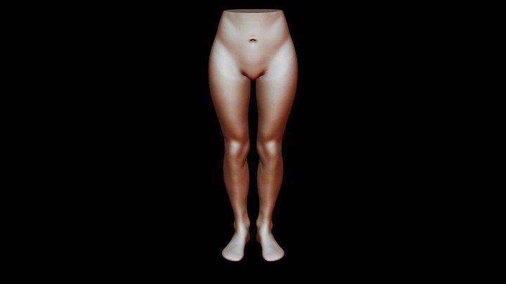 Legs 3D Model