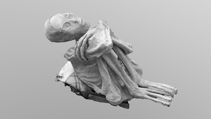 Unearthing Nazca Mummy 3D Model