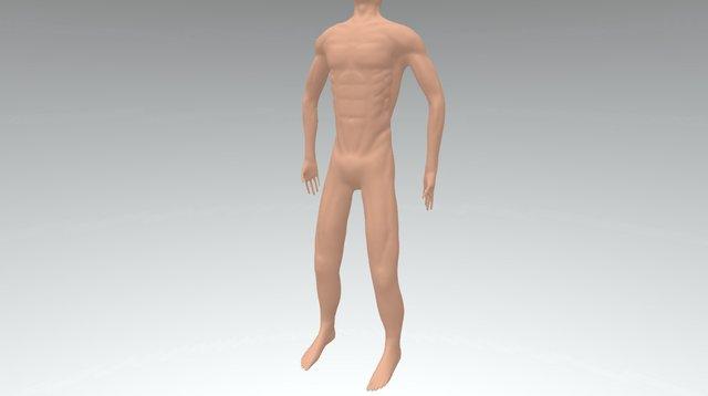 Male Anatomy Study 3D Model