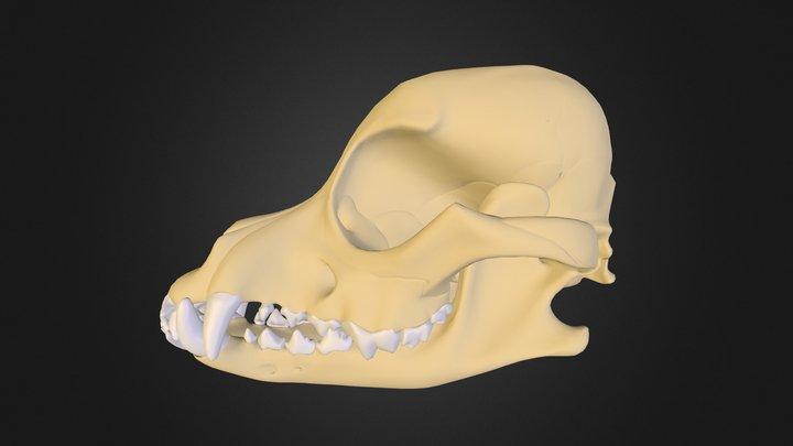 Test_01 3D Model