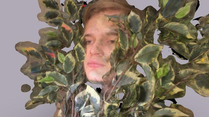 bushface 3D Model
