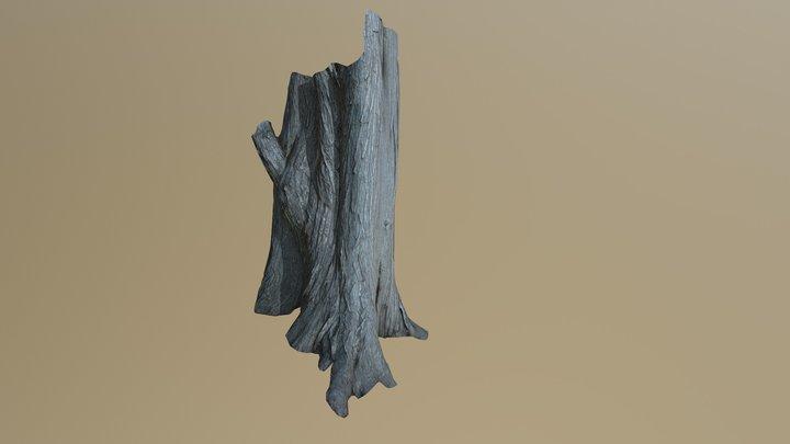 Photogrammetric Tree 3D Model