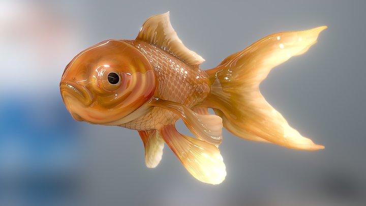 Gold Fish 3D Model