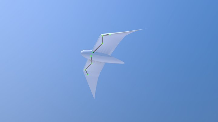 3D wing morphing drone 3D Model
