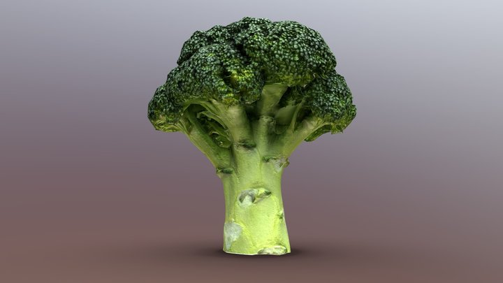 (Game-Ready Free) Broccoli 3D Model