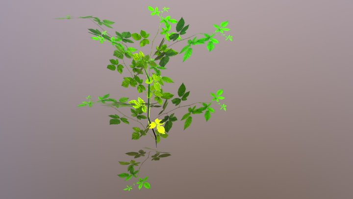plant high poly for games 3D Model