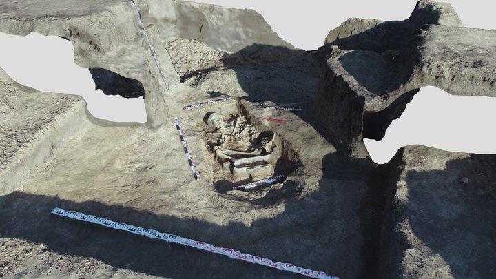Курган 2019 3D Model