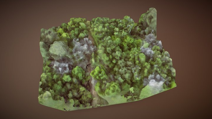 Preburned Gallien canopy imagery model 3D Model