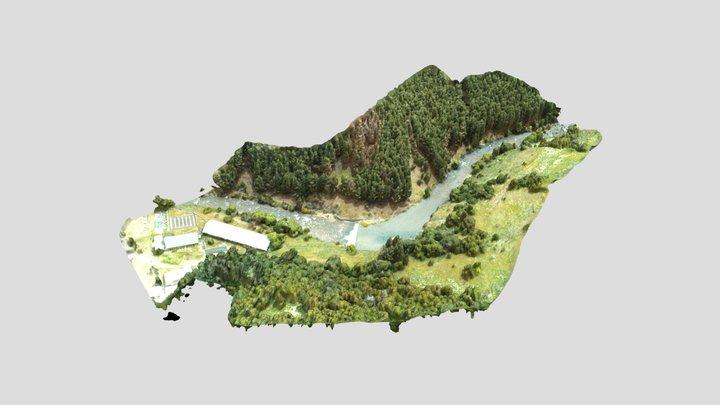 Pozones en el Río Claro 3D Model