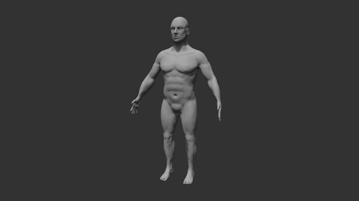 Anatomical Human Male Sculpt 3D Model