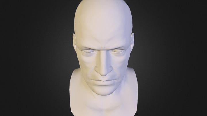 cabeça_sidneybvd 3D Model