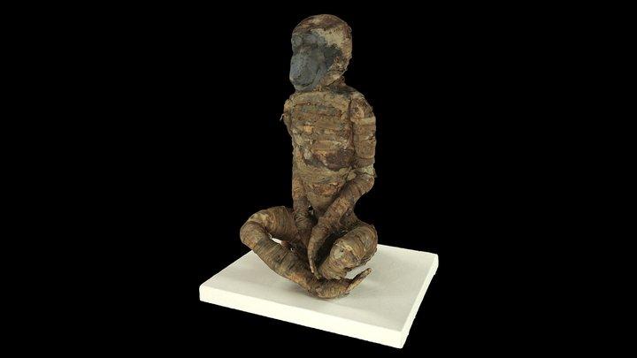Baboon Mummy 3D Model
