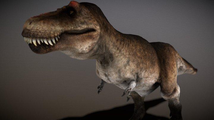 Scotty the Rex 3D Model