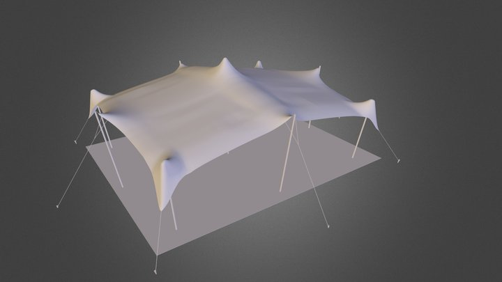 9m x 12m Freeform Stretch Tent 3D Model